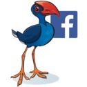 Pukeko Team - Request to Join